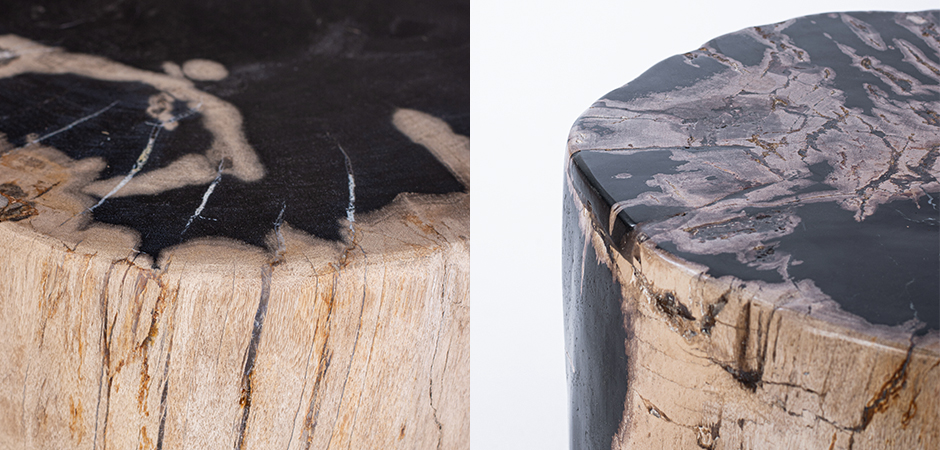 Пенек из окаменелого дерева black and white  - фото 3