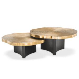Комплект кофейных столов Eichholtz Coffee Table Thousand Oaks set of 2