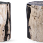 Пенек из окаменелого дерева black and white  - фото 4